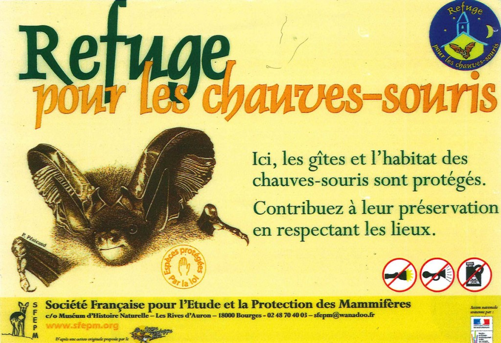 REFUGE-CHAUVE-SOURIS-1